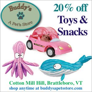 buddys sale